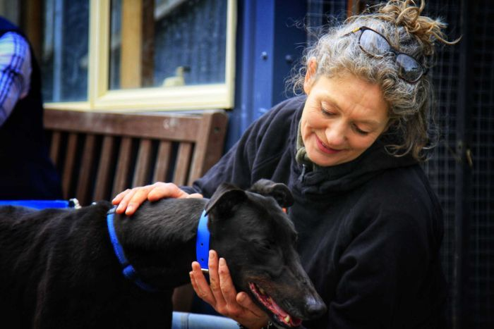 Emma Haswell at Brightside Sanctuary pats a dog.