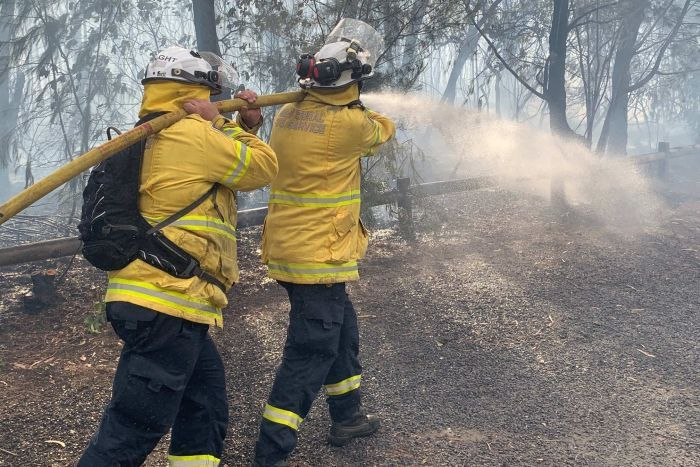 Firefighters battling the spread of a blaze at Turramurra.