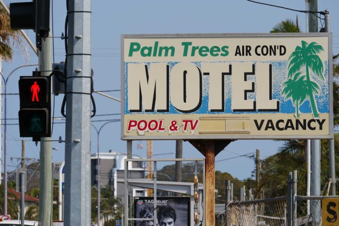 And old-style motel sign with palm tree beside a traffic light on what appears to be a busy road.