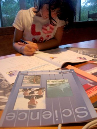 A girl studies using home-schooling textbooks