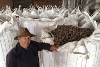 It's been a tough few years for potato producers on the Atherton Tableland