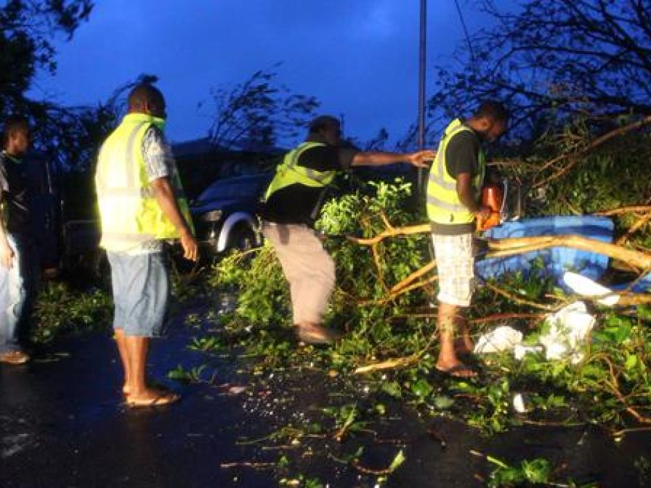 Fallen trees in Vanuatu after Tropical Cyclone Pam