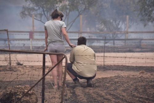 Two people in bushfire smoke