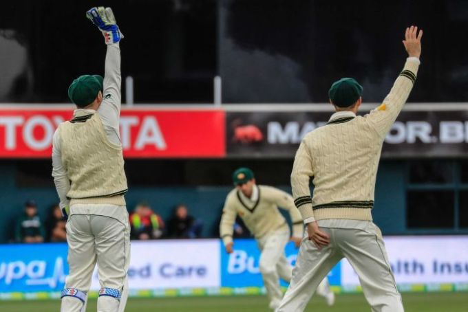 Peter Nevill and Adam Voges appeal on day two at Bellerive Oval against the West Indies