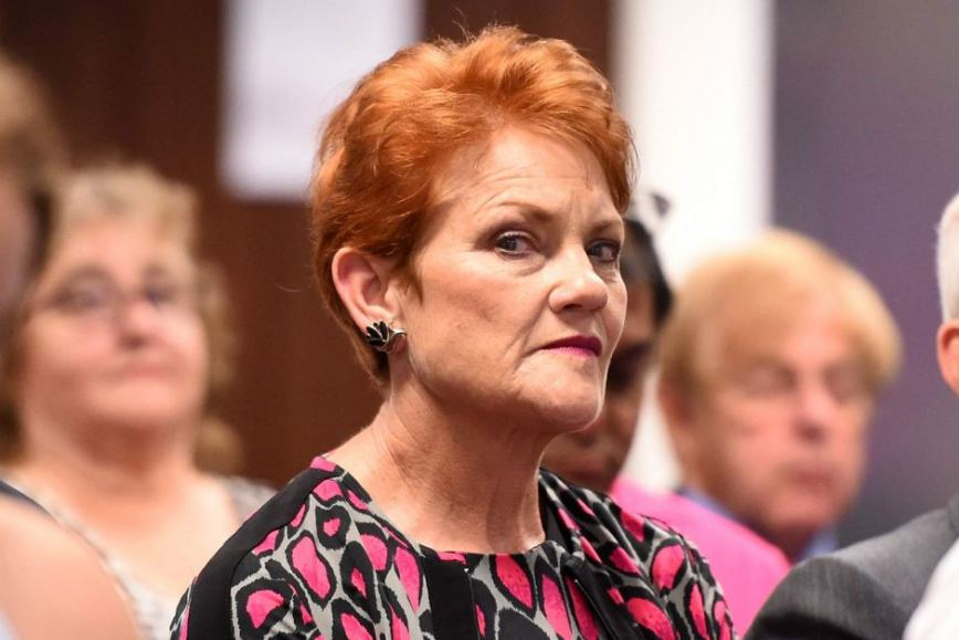 Image result for free to use image of pauline hanson