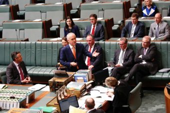 The Turnbull Government begins to wash its face - ABC News ...