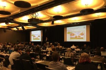 Head of weed control research for Bayer Crop Science, Dr Marco Busch, speaks at the 20th Australasian Weeds Conference