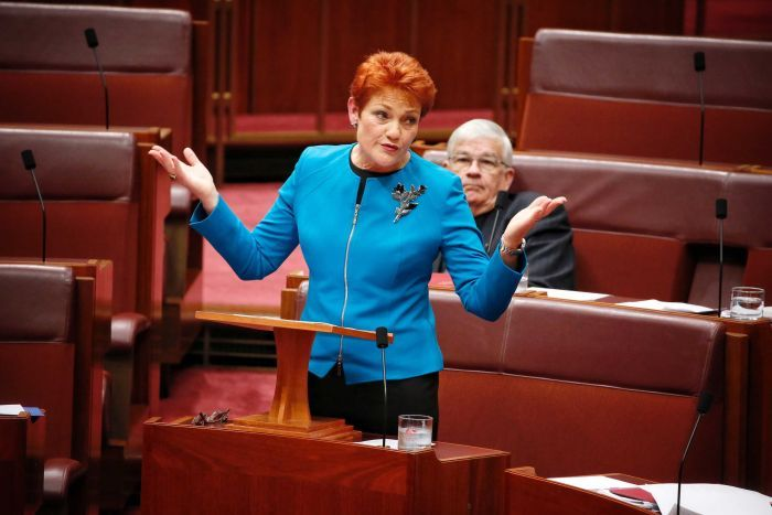 Pauline Hanson throws her hands up in the air during a speech to the Senate.