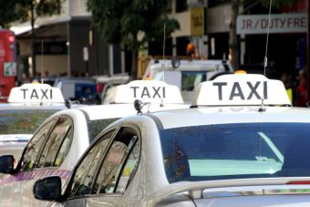 Rear view of taxis lined up