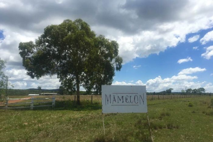 Clive Palmer is looking to open a new mine in central Queensland on his Mamelon station