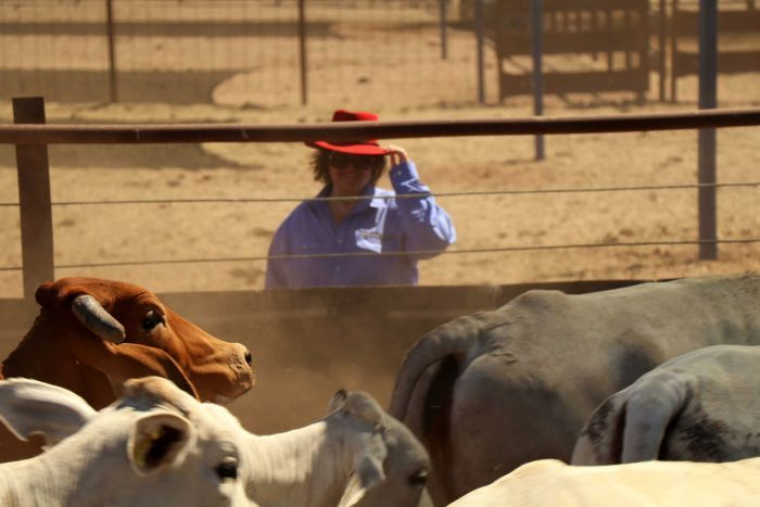 Gina Rinehart is the proud new co-owner of the Kidman cattle empire.