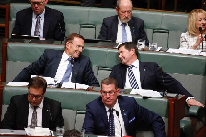 Tony Abbott and Kevin Andrews look into each others eyes on the backbench