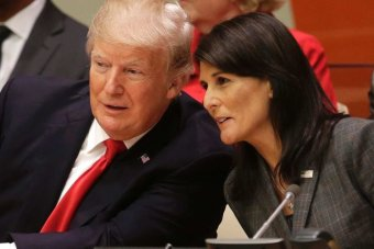 Donald Tump and Nikki Haley lean together to talk behind a desk at the UN.