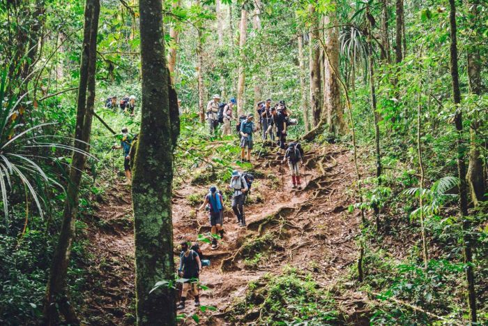 Image result for kokoda track