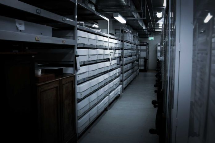 A long corridor of filing cabinets at Melbourne Museum.