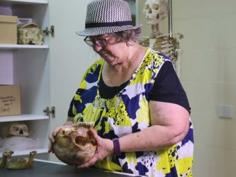 A woman holds and examines a human skull.