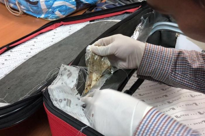Heroin found embedded in the side of a woman's suitcase.