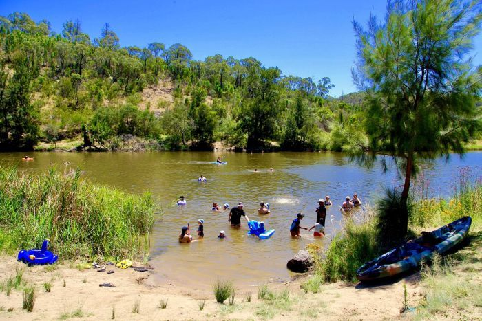 People swimming in the Murrumbidgee River in the ACT.