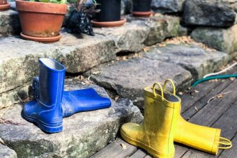 Two pairs of gumboots sit outside a home