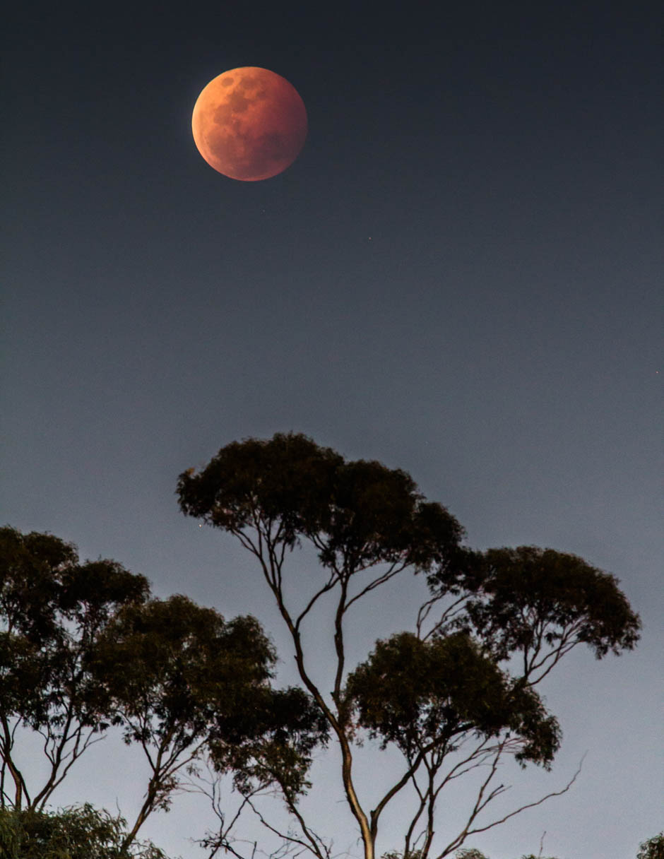 Lunar eclipse 'blood moon'