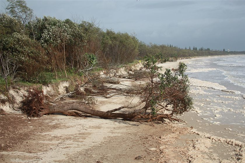 erosion at Kingscliffe beach