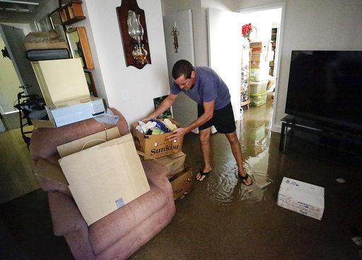 Hurricane Irma_599654