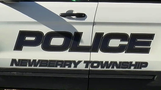 newberry_township_police_1522079165815.jpg