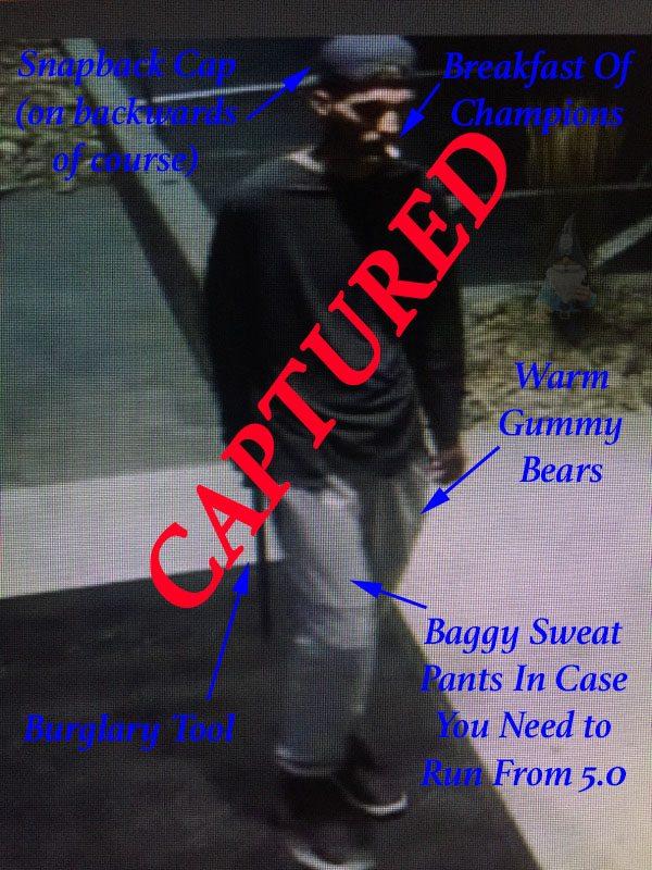 Orem gun thief captured