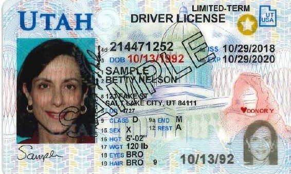 renew drivers license california by mail