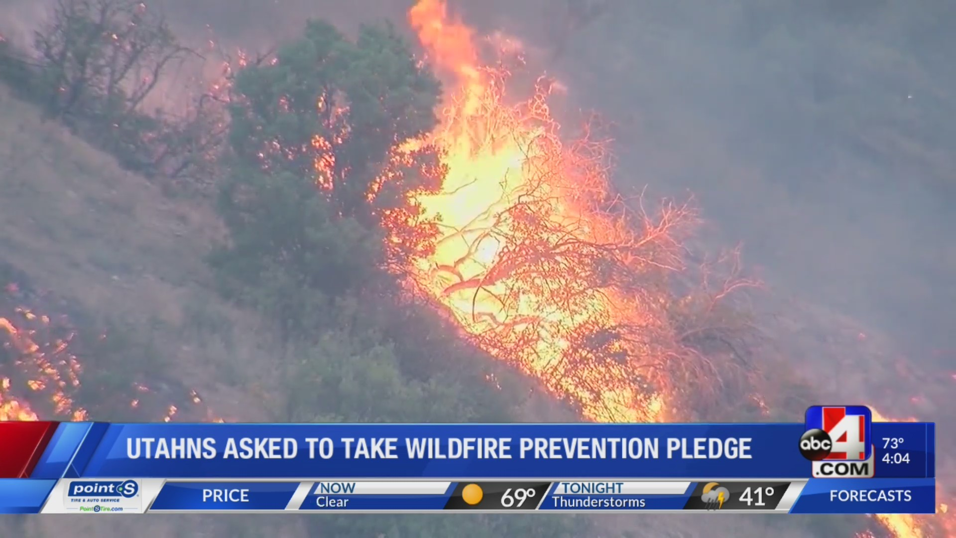 Pledging to prevent Wildfires