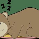 O urso dorminhoco