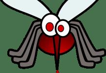 Lengalenga do mosquito e o cão