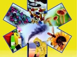 Como prevenir as intoxicações em crianças