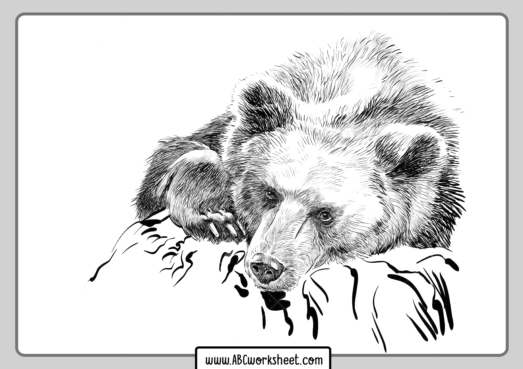 Grizzly Bear Coloring Pages