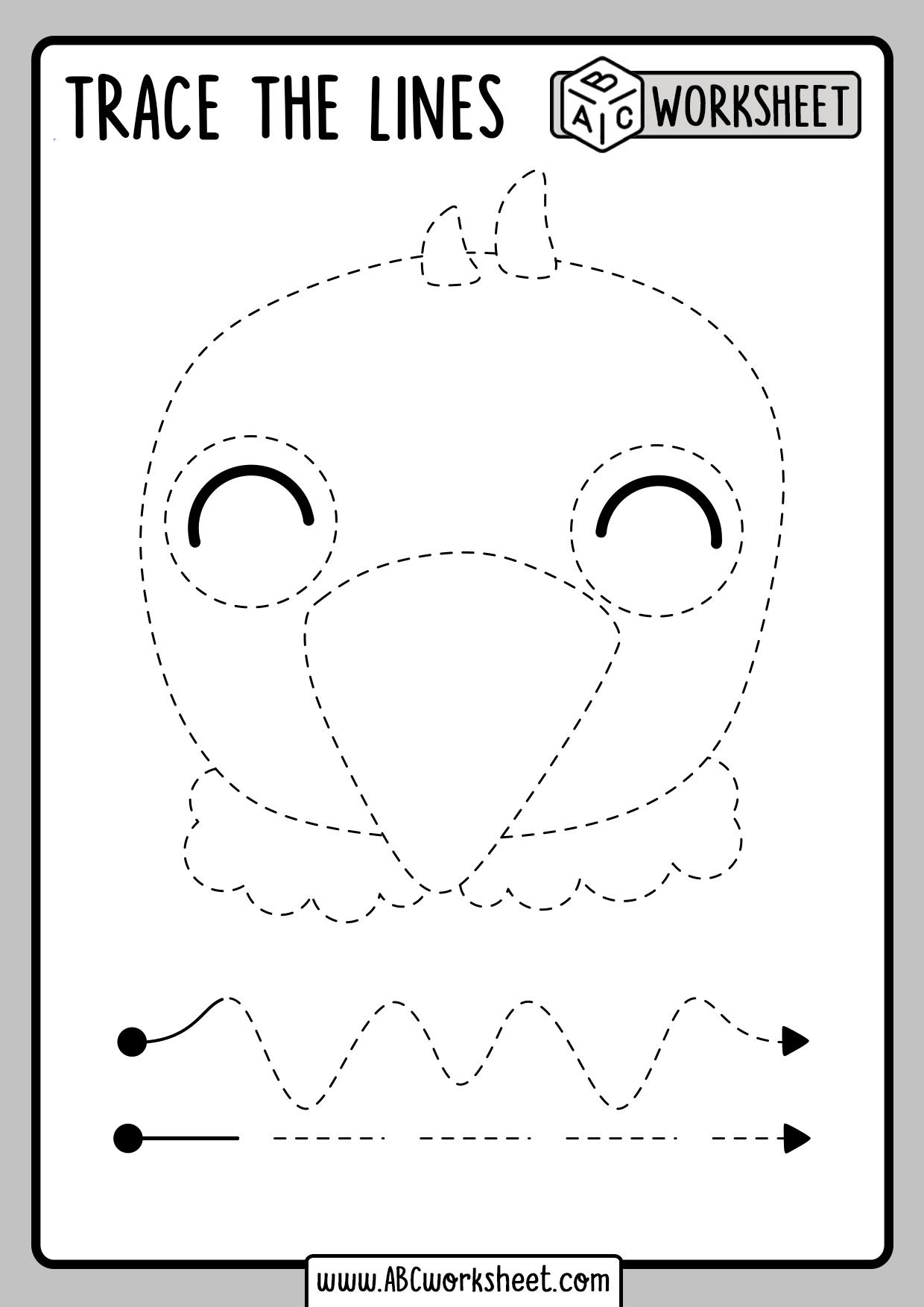 Bird Tracing Worksheet