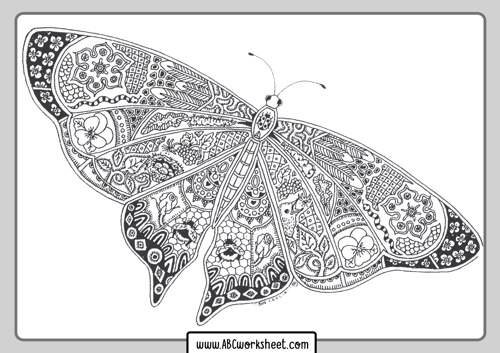 Butterfly Mandala For Coloring