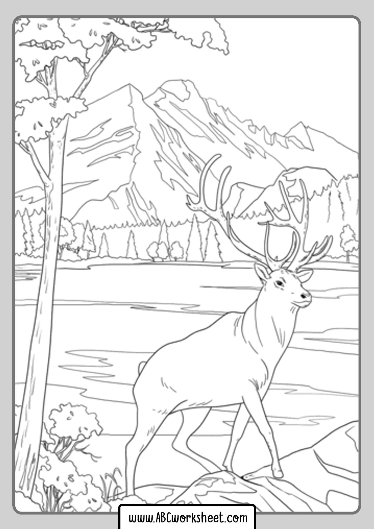 Printable Deer Coloring Pages