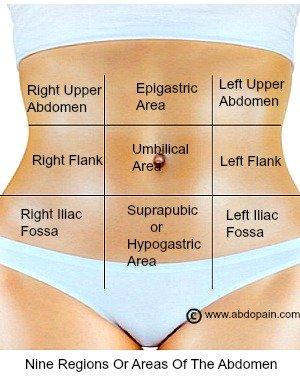 Periumbilical Abdominal Region Pain Related Keywords ...