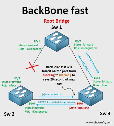 backbone-fast