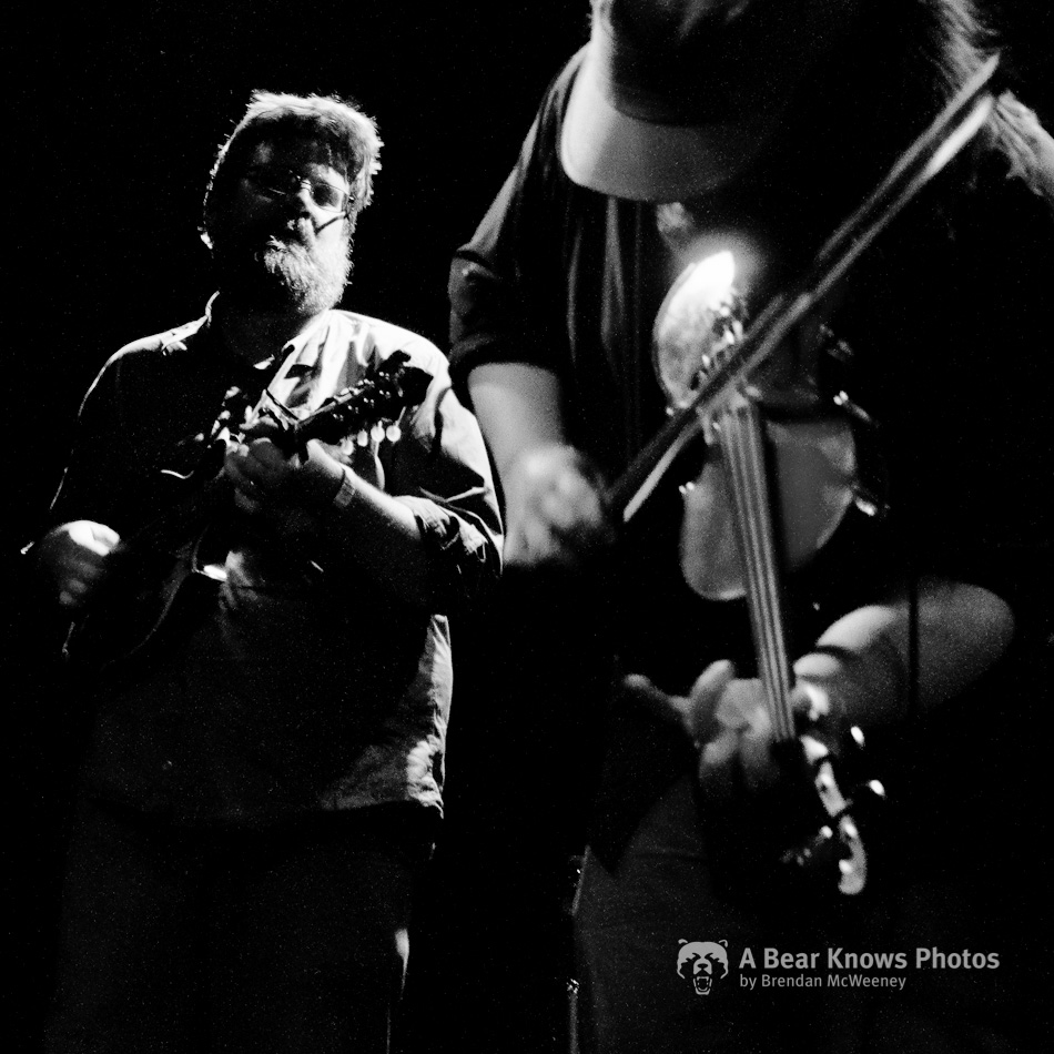 Trampled By Turtles at The Independent (12)
