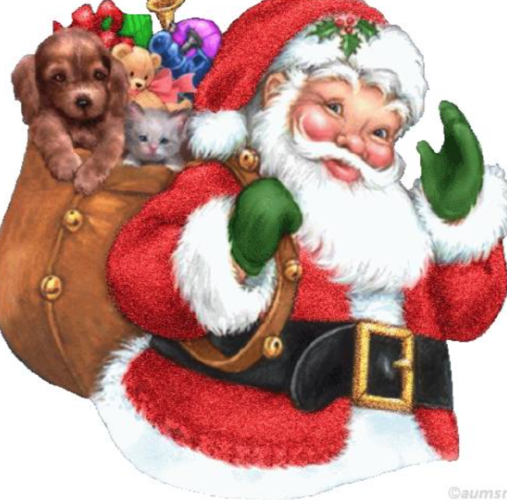 Royalty Free Santa Claus Photo