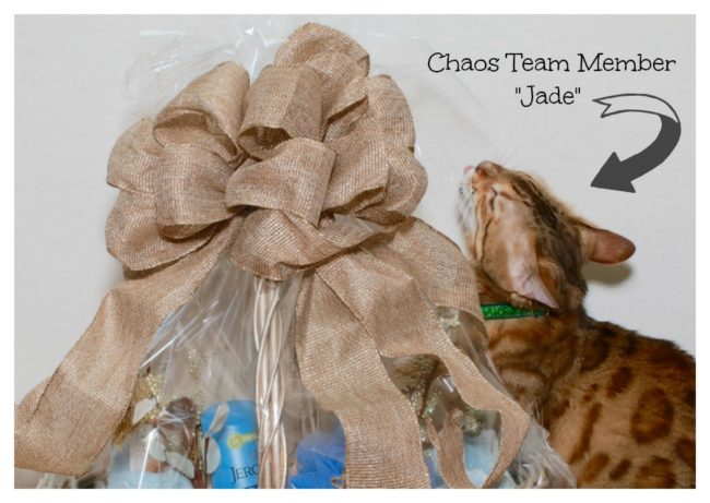 Bengal cat Jergens Skin Care Gift Basket