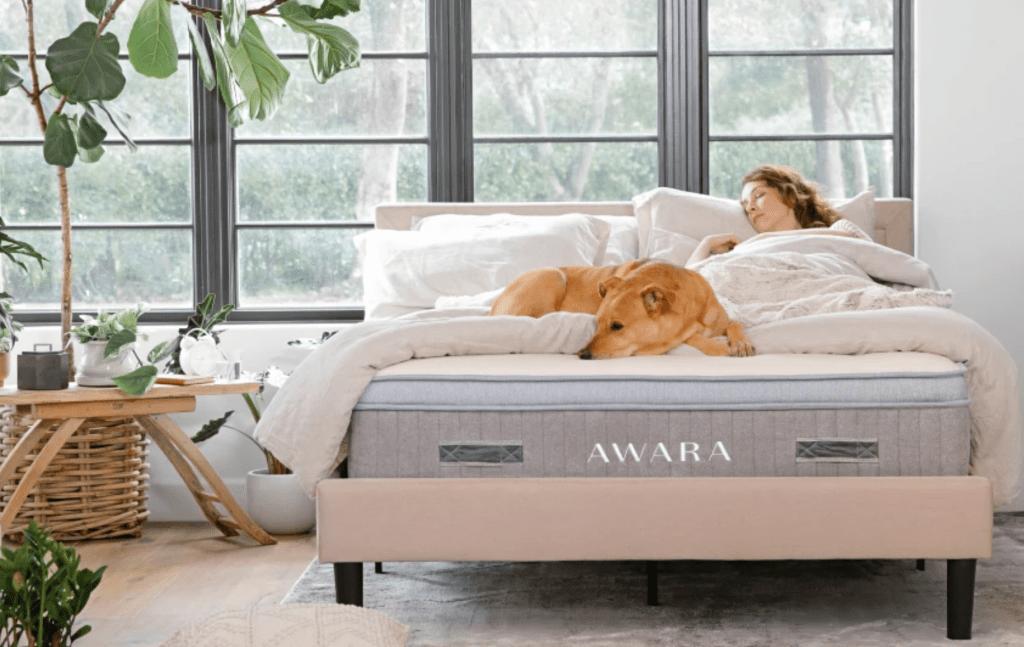 awara-natural-pillow-top
