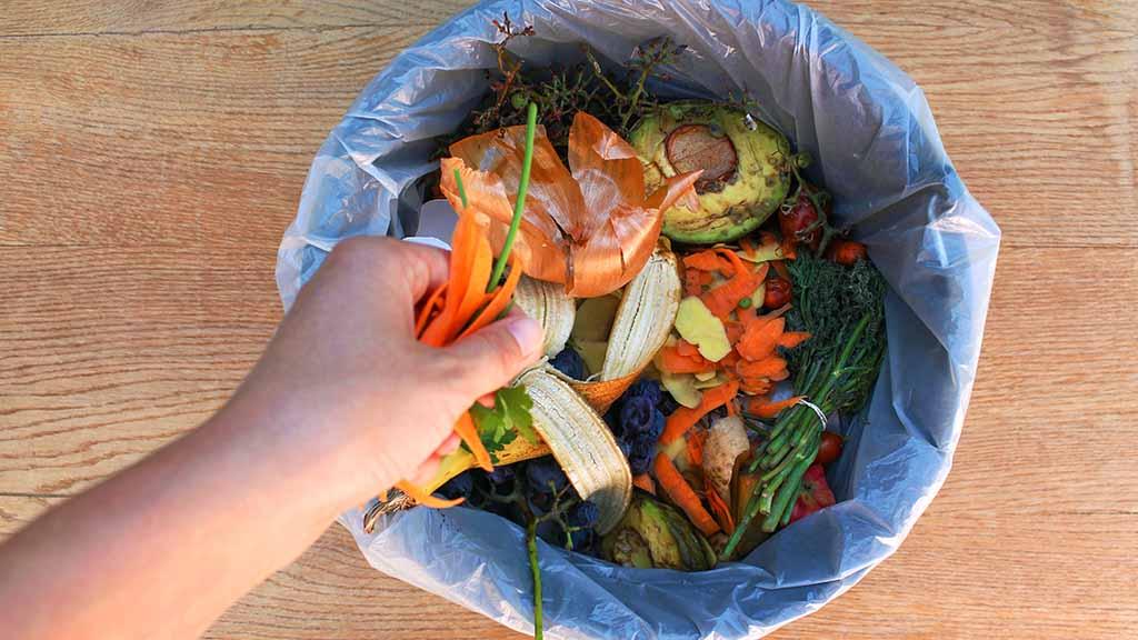 Berlin macht Fortschritte bei der Mülltrennung