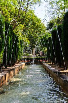 Im Garten der Kathedrale von La Palma