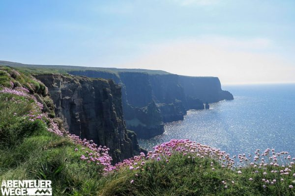 Die berühmten Cliffs of Moher an der irischen Westküste