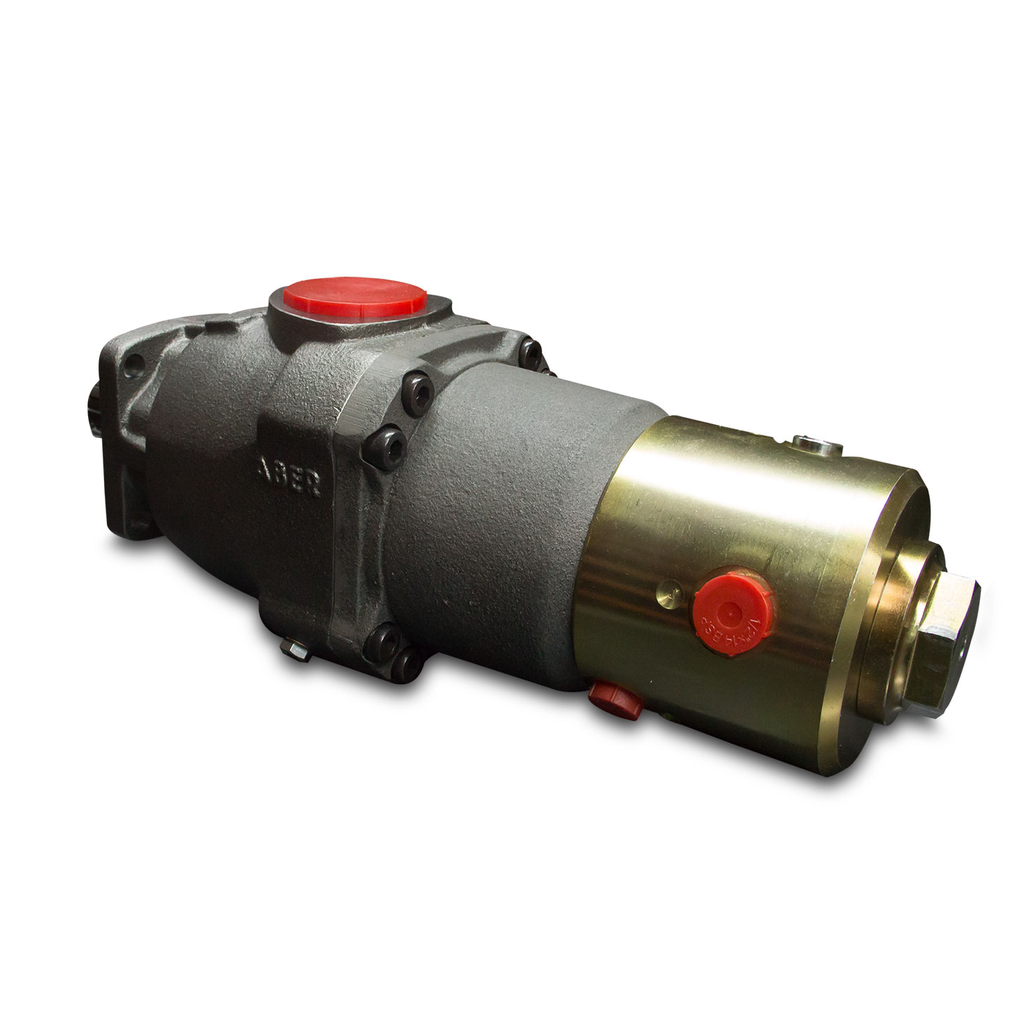 Customized Piston Pump - Special Products - ABER