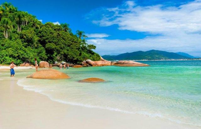 Ilha do Campeche sunga de praia aberbeach (1)