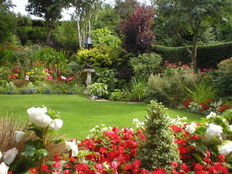 back garden in Aberdeen