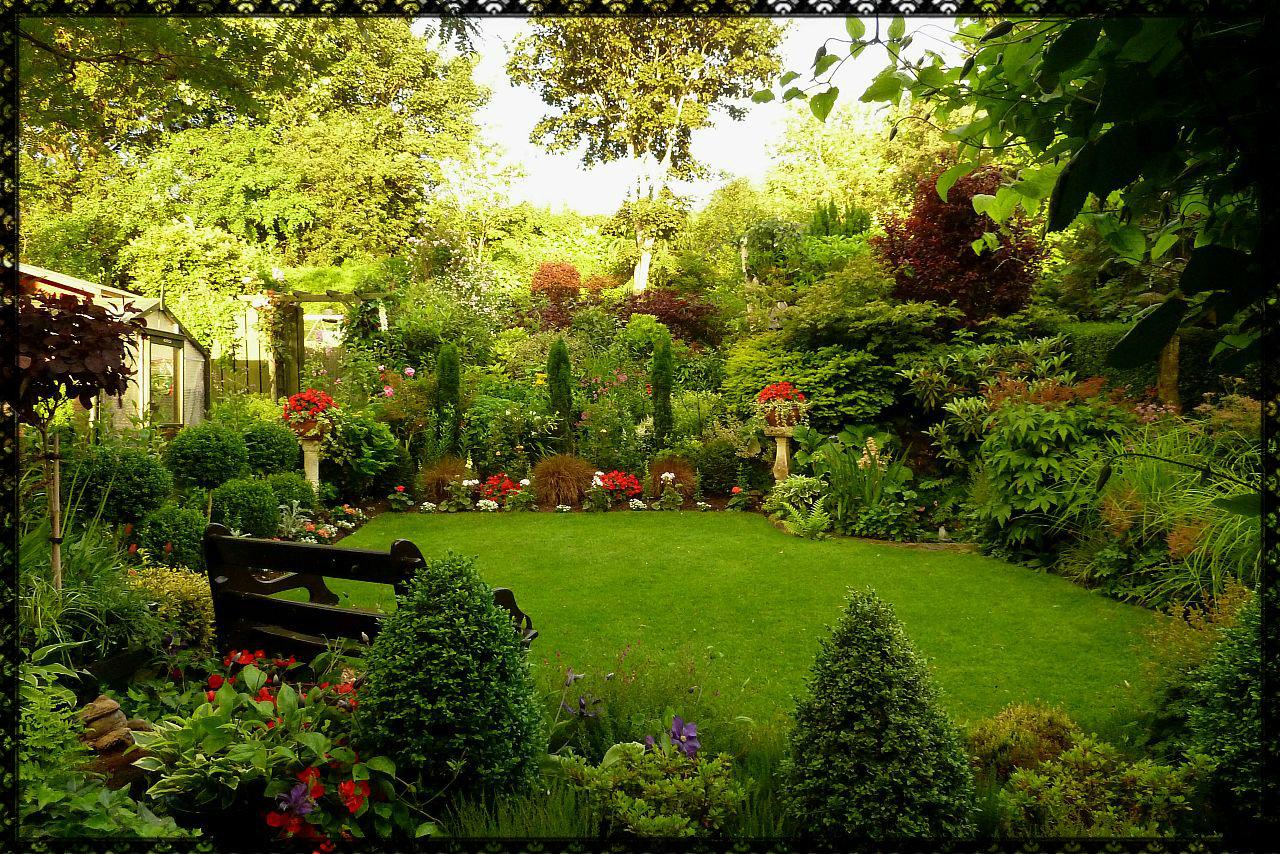 Back garden july 12th 7 aberdeen gardening - Ah Well Until Next Time